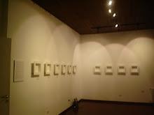 muestra 2009