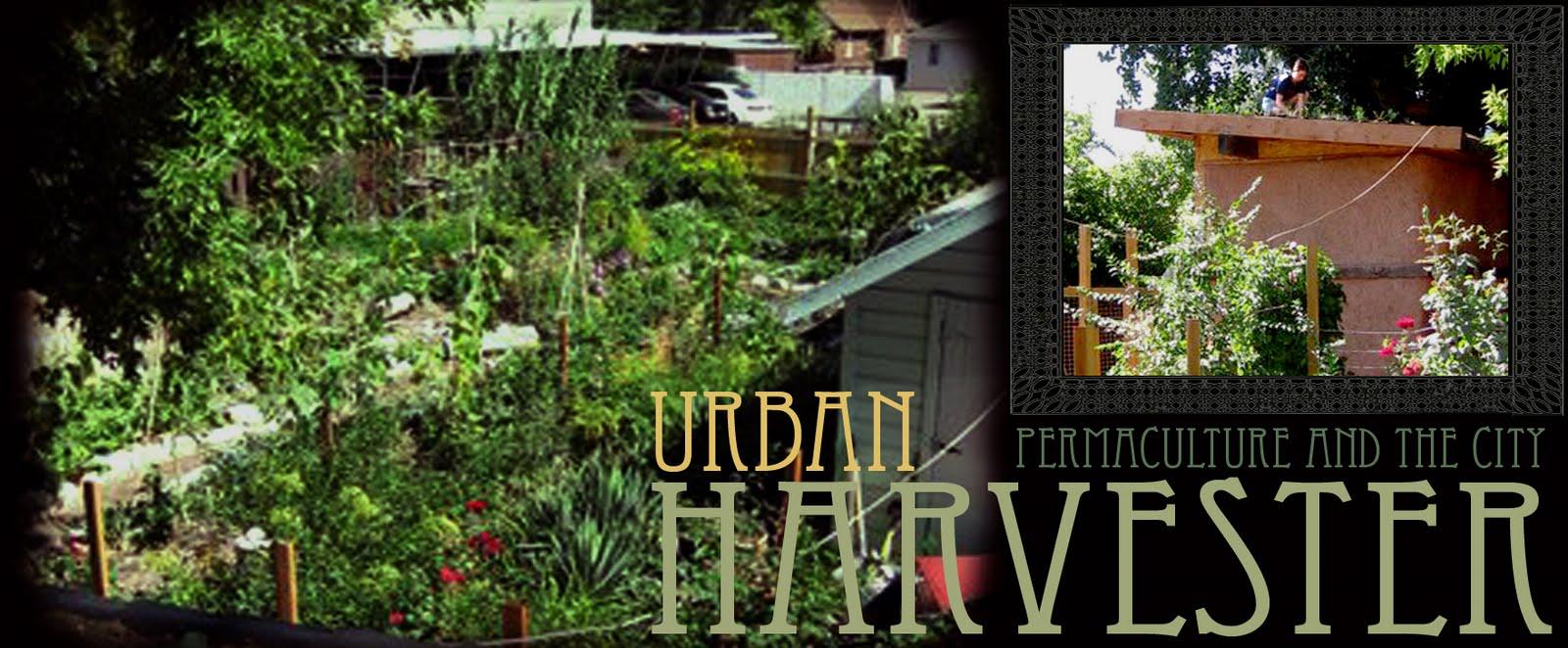 Urban Harvester