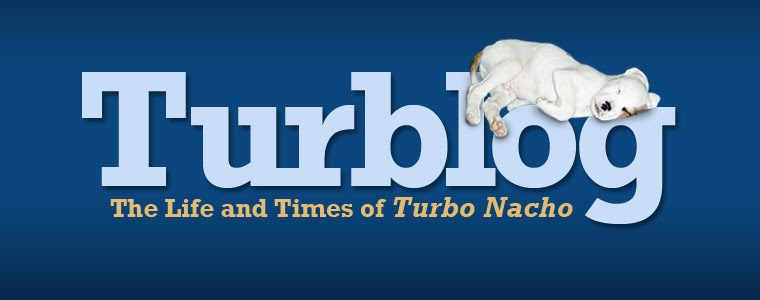 Turblog: The Life and Times of Turbo Nacho