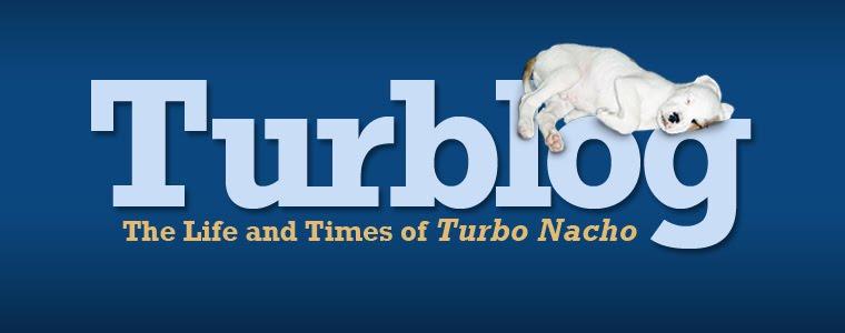 Turblog: The Life and Times of Turbo Nacho
