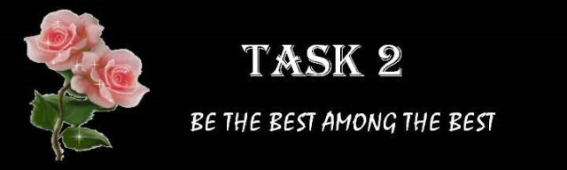 a2-task2