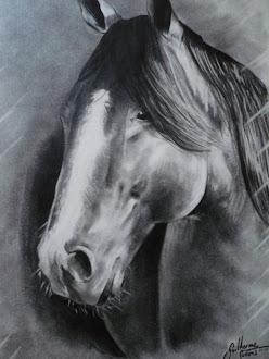 Cavalo em grafite