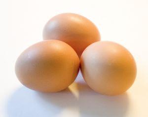 yumurta Yumurta maskesi yapımı cilt için
