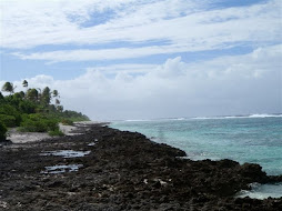 Rocky shore on reef side