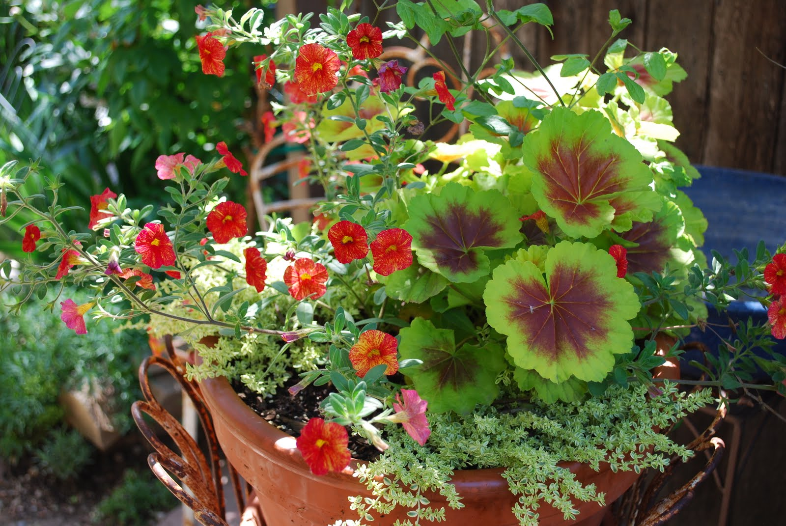 The art garden garden designers roundtable containers for Container garden ideas