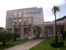 Biblioteca Pública Municipal de Ribadavia