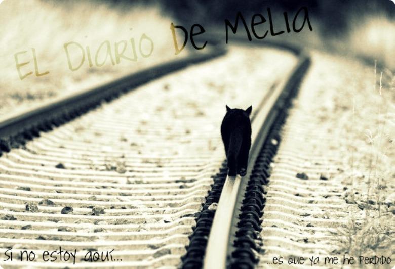 El Diario de Melia