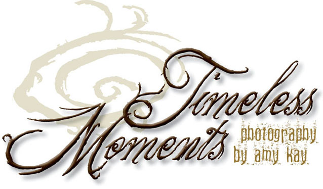 Timeless-Moments by Amy Kay