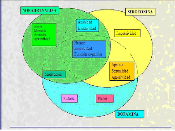 Equilibrio de neurotransmisores