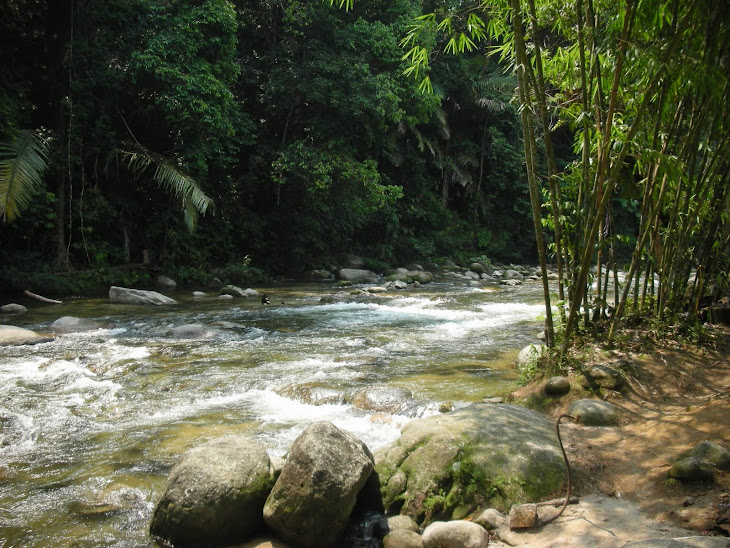 Sungai Sedim