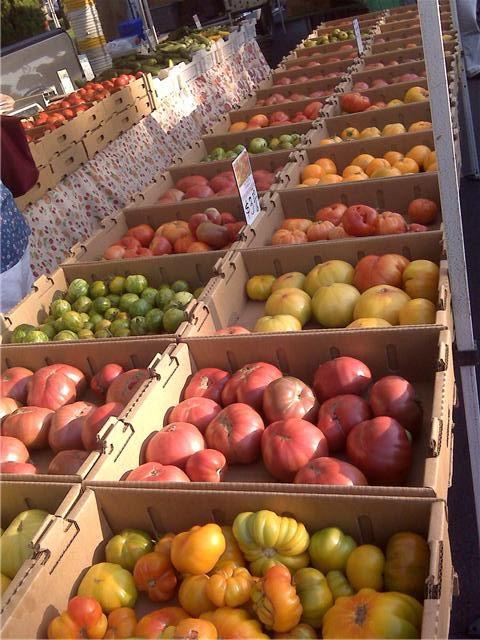 Sonoma Farmer's Market Tomatoes