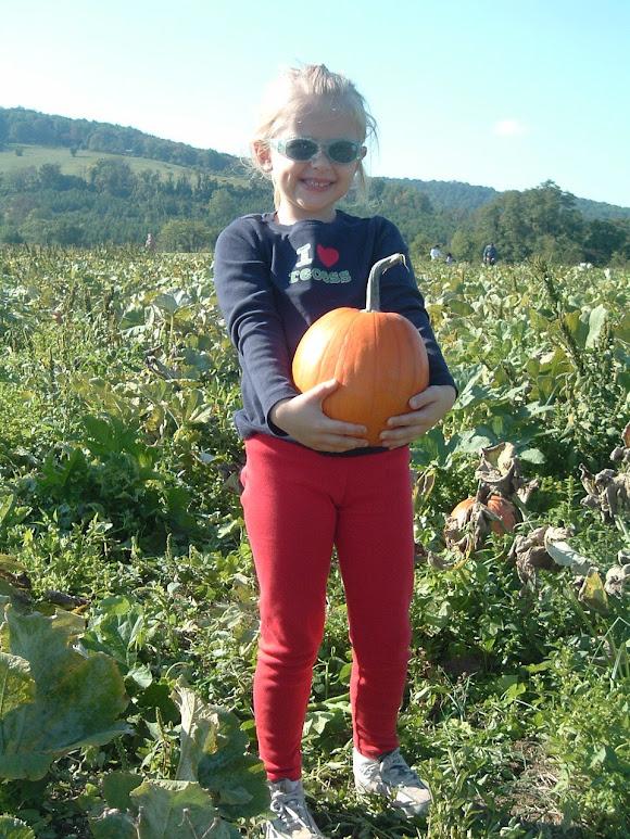 Taylor's pumpkin!!