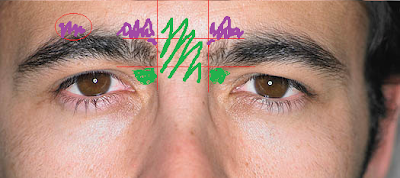 brows2 How to groom your own eyebrows   a guide for men.
