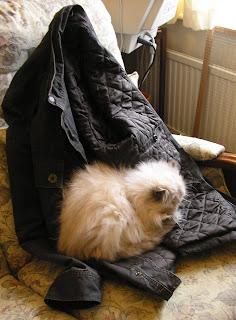 Her coat is so warm...