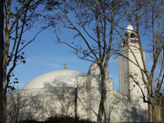 Grand Mosque. Lyon: Mosque in France