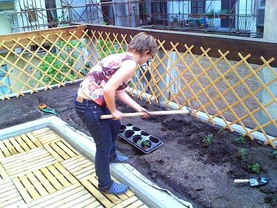 Il giardino delle idee l 39 orto sul tetto di casa a torino - Giardino sul tetto ...