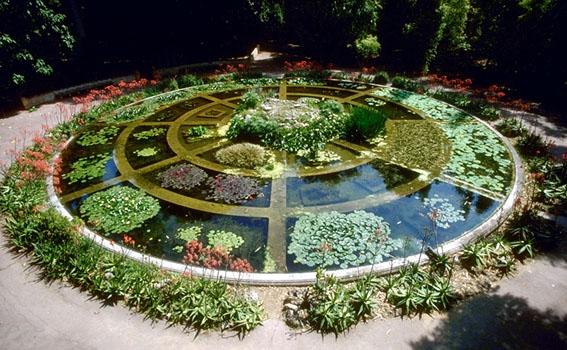 осуществленные в Ботаническом саду Неаполя