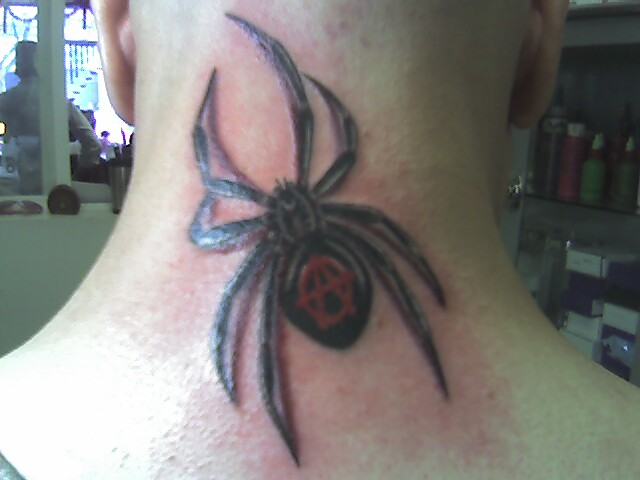 3D Tattoos Spider