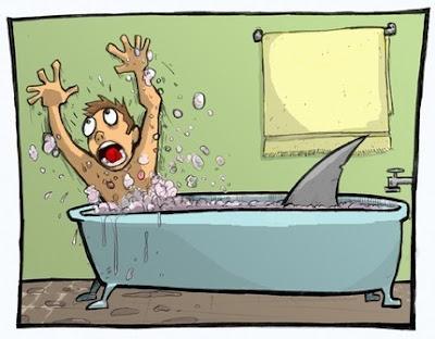 sisfor+joehavasy+shark.jpg