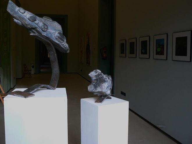 metamorfosis2008, emilio sánchez (gil garcía, ávila)