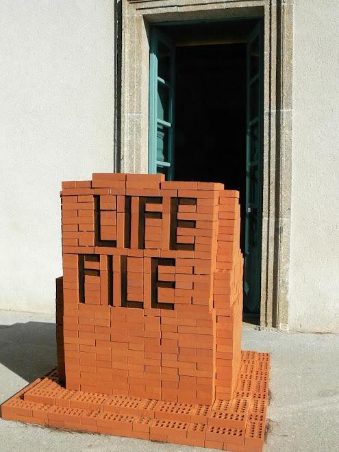 Carlos de Gredos. La vida se archiva fielmente. Ladrillos (2007-08)