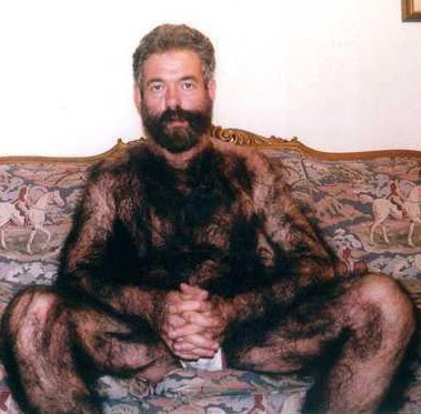 Bears gay hairy guys images