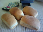 Sun Cooked Breads