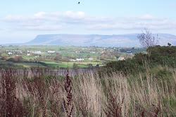Irish Plateau