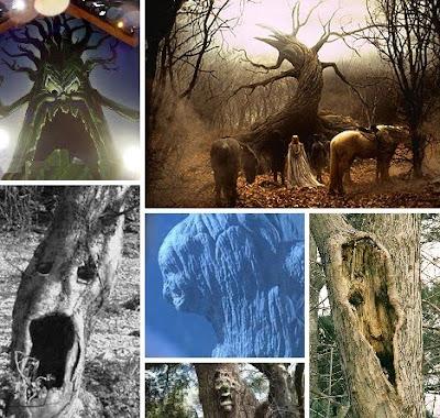 恐怖的大樹 - 最令人恐怖的大樹