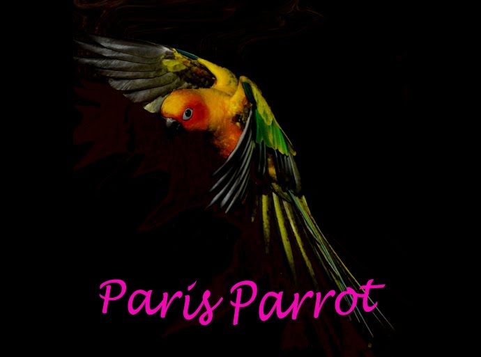 ParisParrotOhYeah!