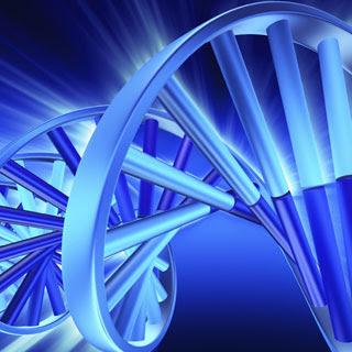 DNA clipart
