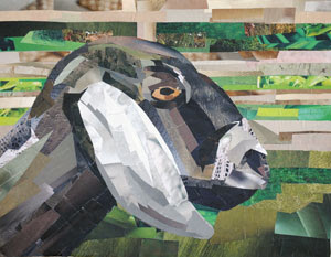 Goat by collage artist Megan Coyle