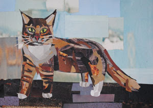 Maine Coon by collage artist Megan Coyle