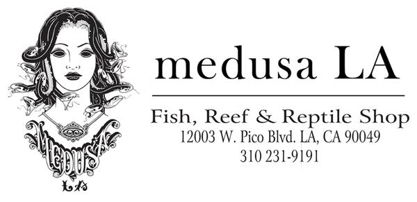 Medusa LA