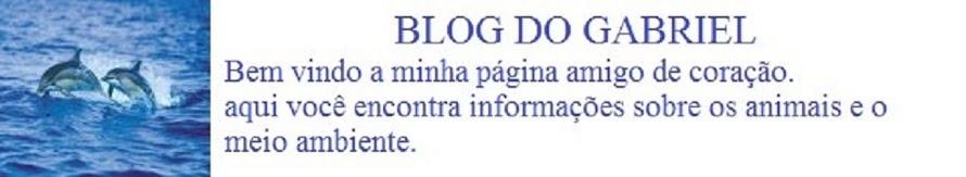 Blog do Gabriel