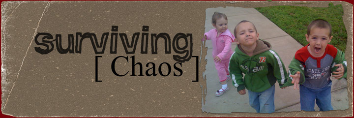 Surviving Chaos