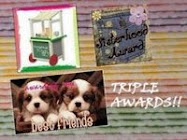 Blog Sisterhood Award
