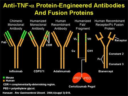 Tnf alpha inhibitor