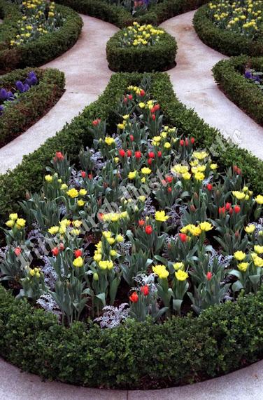 jardin comunal nº 479