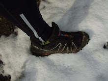 Collserola Snow Running