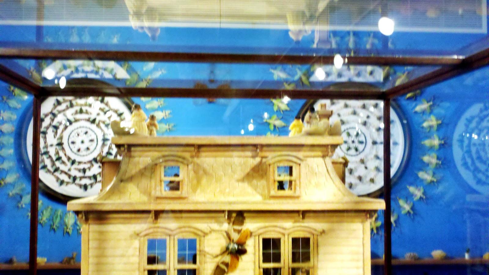 http://3.bp.blogspot.com/_Hh7Ed7Uzlfk/TPa7B-MG3QI/AAAAAAAAA0U/5eD4gcvoONs/s1600/2010-11-21_14-57-21_474.jpg