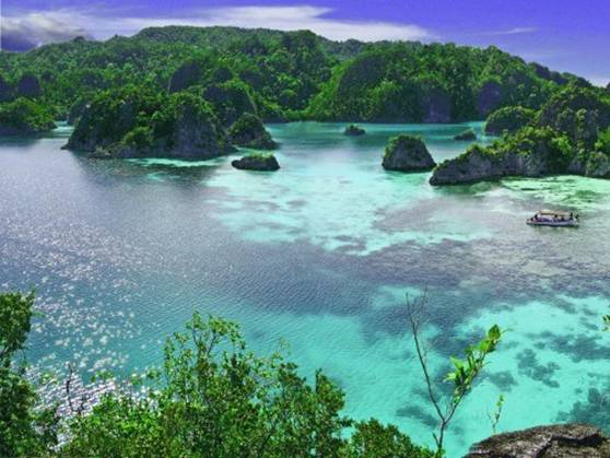 Raja ampat islands - Raja laut dive resort ...