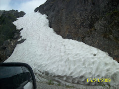 Snow along the road near Skagway
