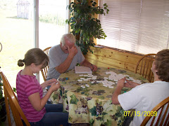 Don played dominoes with the kids