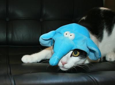 [Image: Elephant1.jpg]