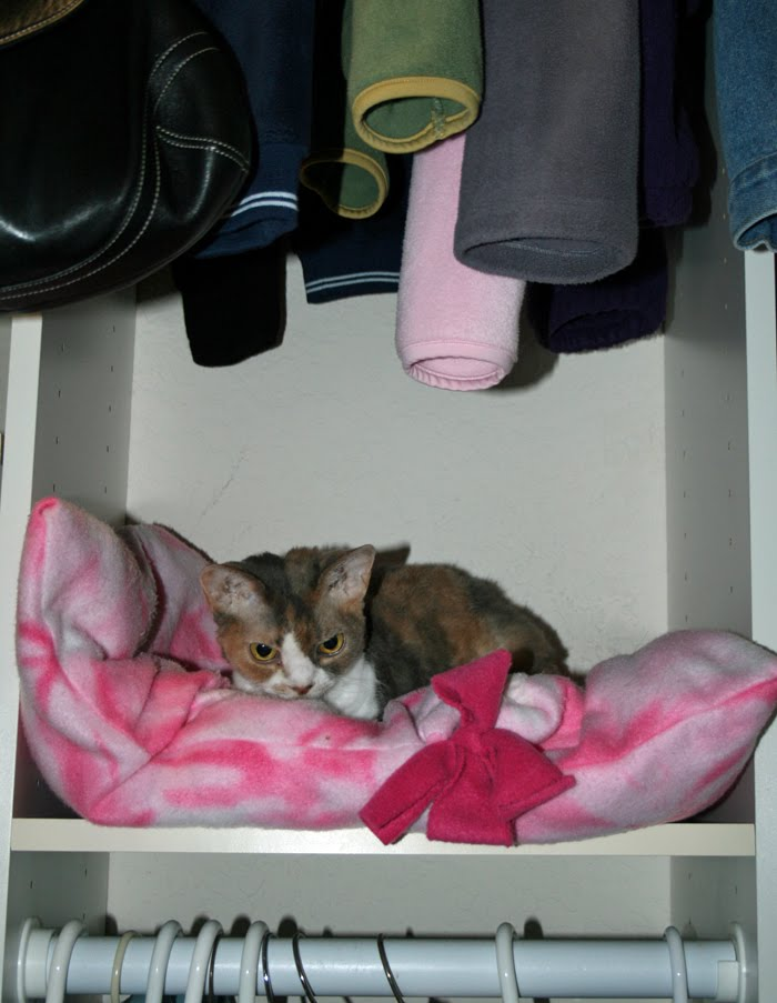 [closet3.jpg]