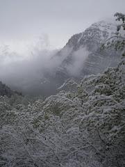 Squaw Peak 50 - 08
