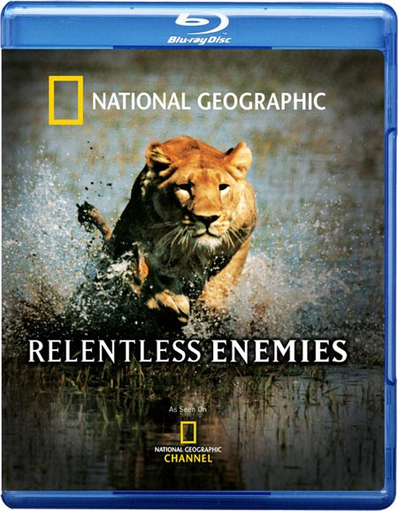 national geographic complete photography pdf free download