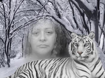 La imágen más alta de mi propia voluntad