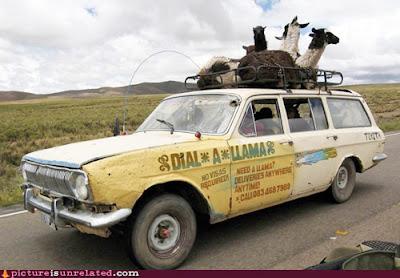 Funny Photo - Dalai Lama